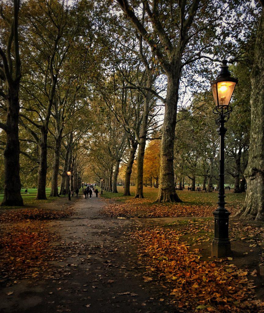 Alla scoperta dei parchi più belli di Londra