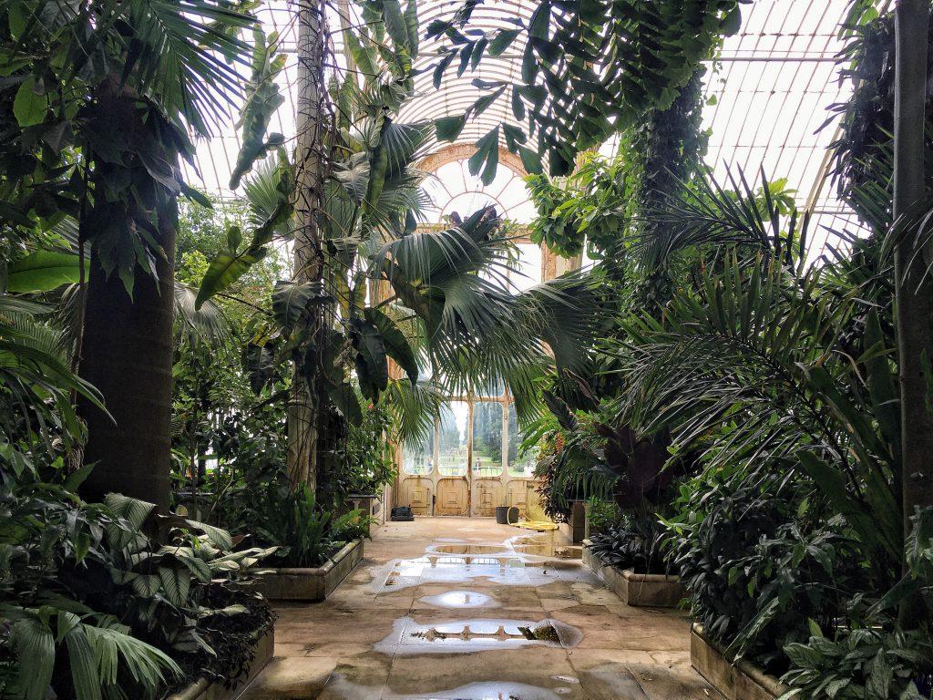 Temperate House ai Kew Gardens di Londra